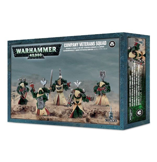 Dark Angels Fallen / Veterans