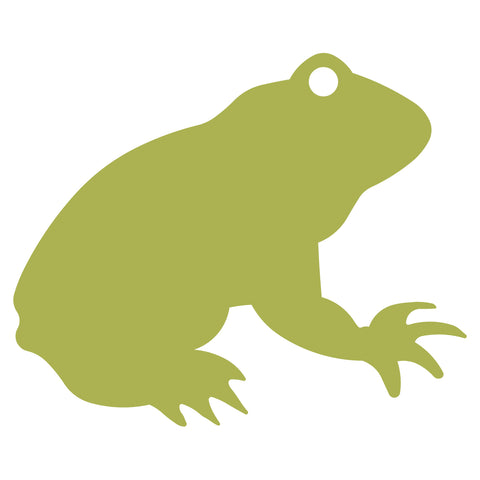 Frog #2