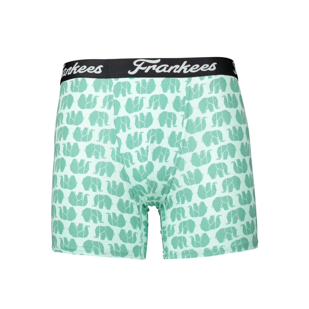 Long Leg Trunks - Mint Ellies