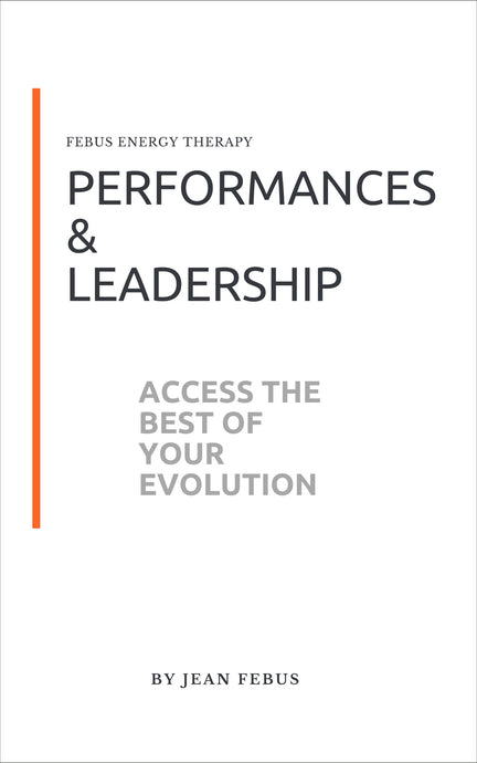 PERFORMANCES AND LEADERSHIP - Jean FEBUS