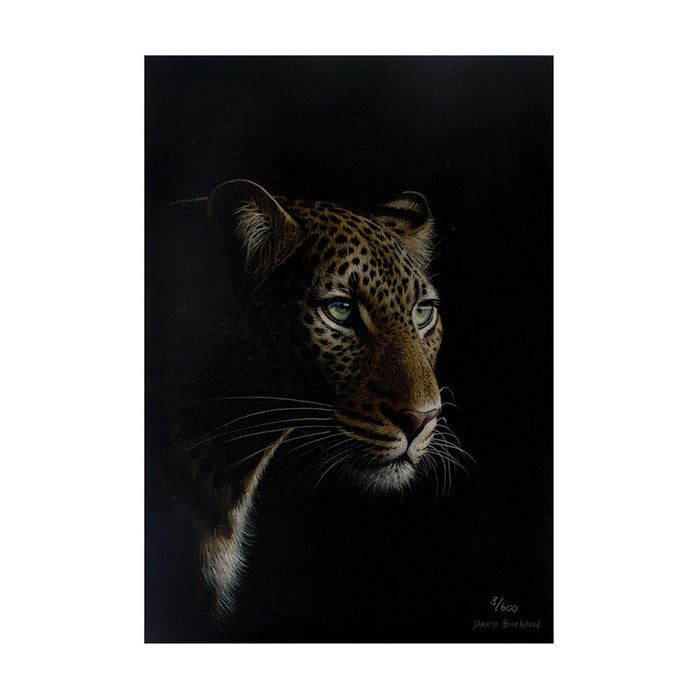 Leopard Canvas (3/600), Painting - Asili Designs