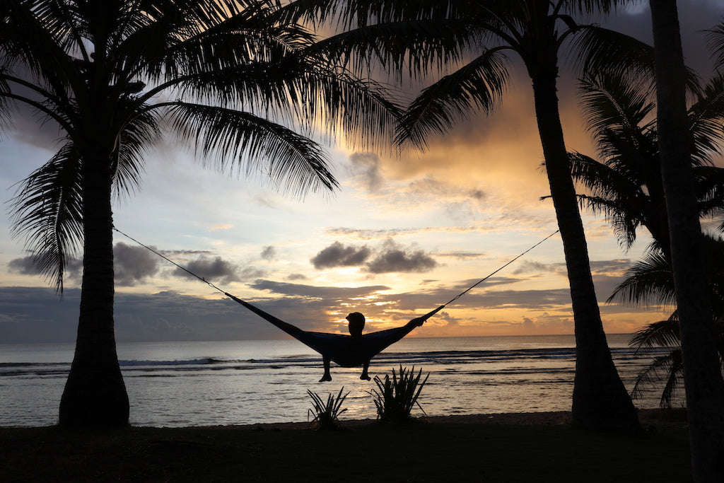 Hammock set up in between palm trees at sunset
