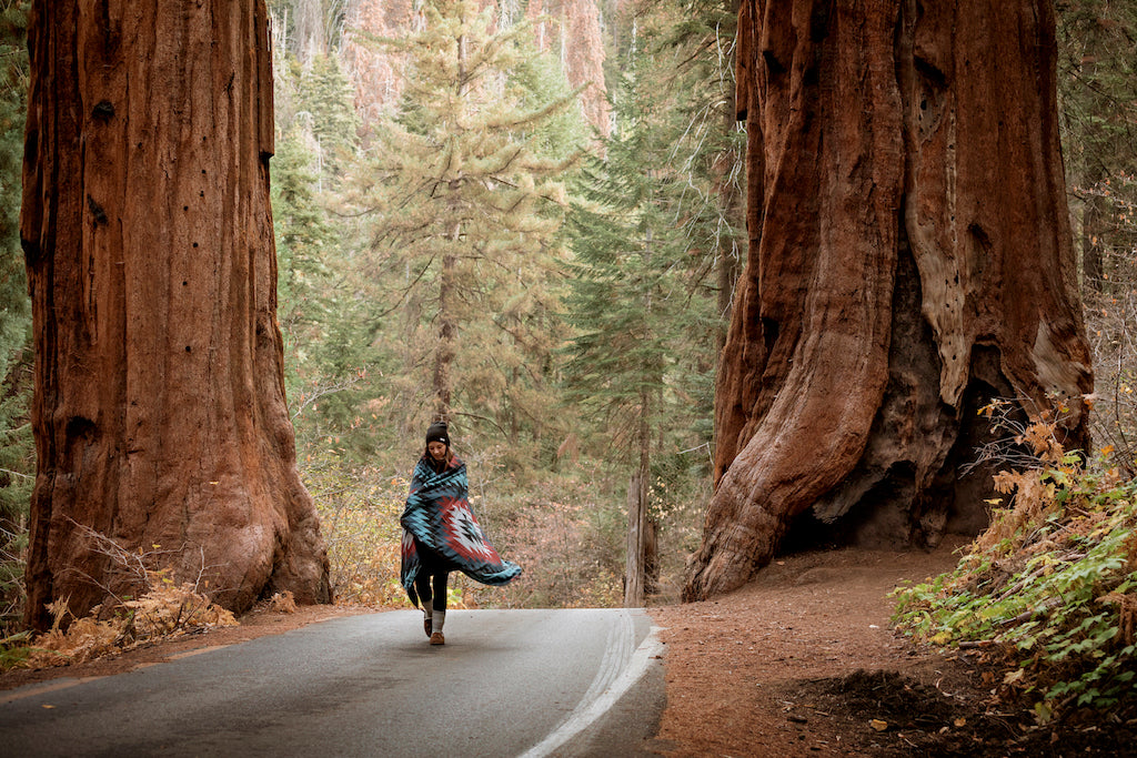 Girl twirling in between two giant red woods trees