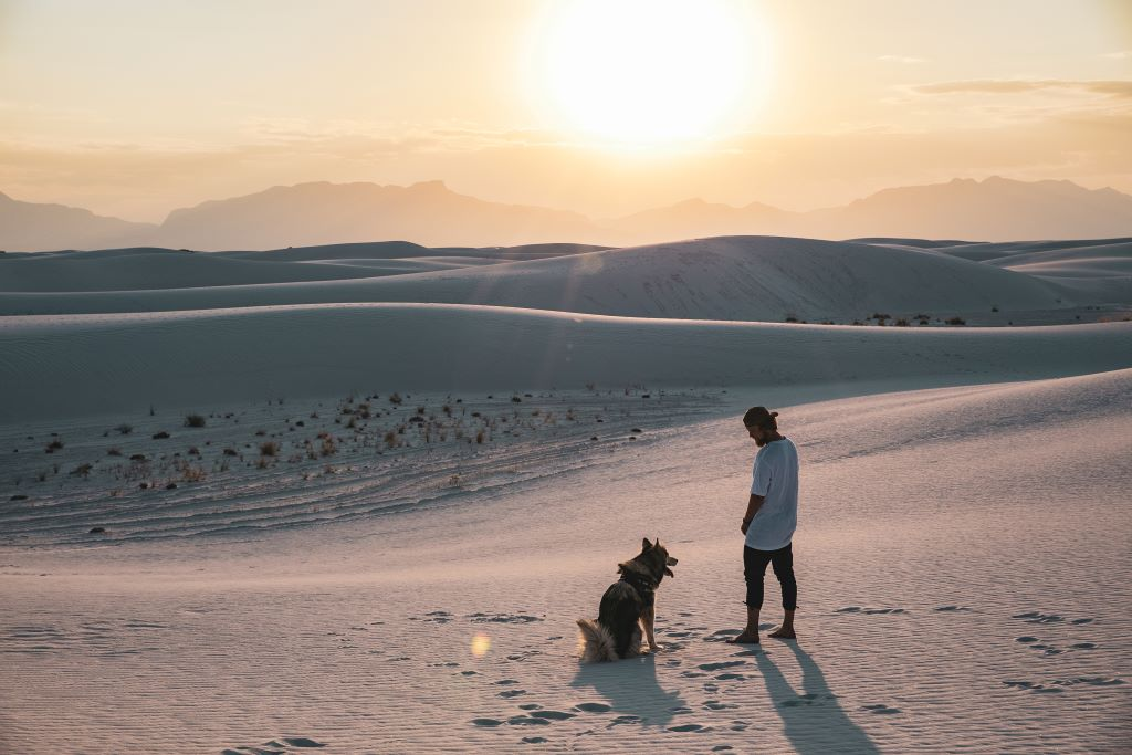 A guy and his dog at the sand dunes