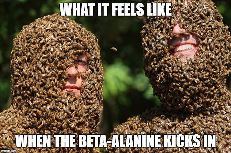 why does beta-alanine make my skin tingle?