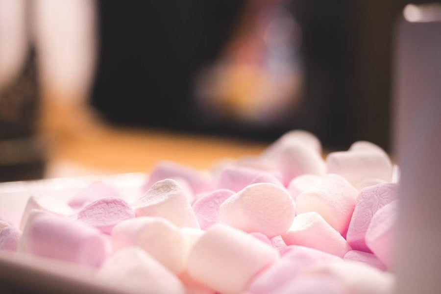 The Marshmallow Test & How Endurance Athletes Can Master Self-Control