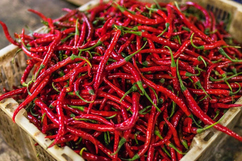 Capsaicin: A Spicy Supplement For Speed?