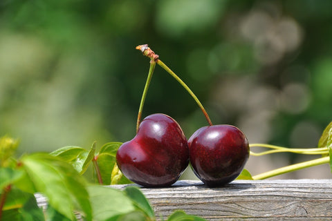 Tart Cherry Juice Supplement: Benefits, Dosage, And Side Effects