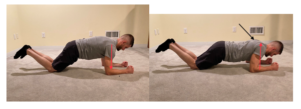 Modified Plank Serratus Anterior Push