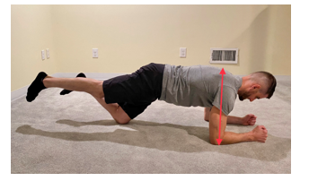 Modified Plank Serratus Anterior Push Progression