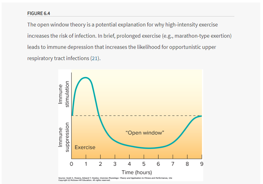 intense exercise decreases immune response