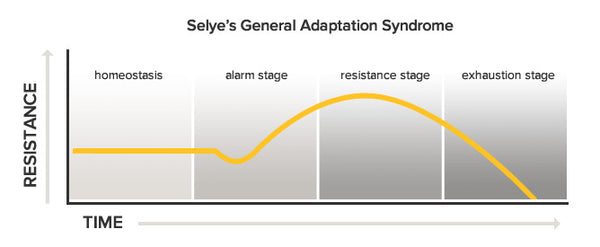Hans Seyle's General Adaptation Syndrome