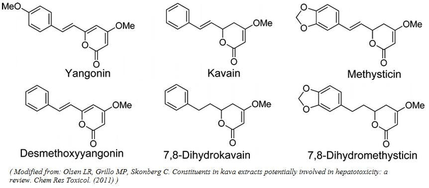 kava structure