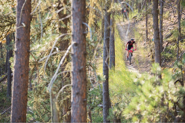 Mountain bikers racing through the Black Hills of South Dakota