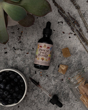 Elderberry Reishi Elixir by Forest Folk Fungi on stone surface