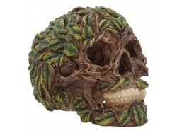 Root of all Evil skull