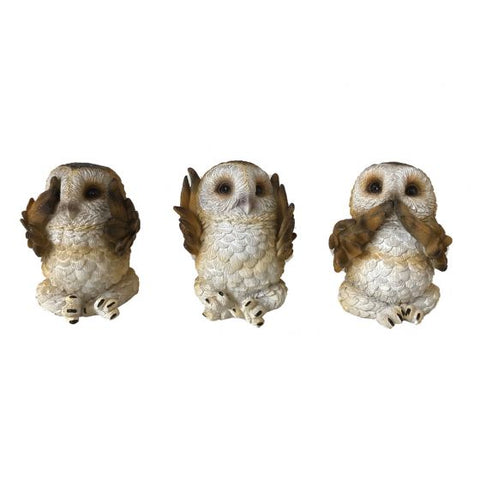 Three Wise Brown Owls