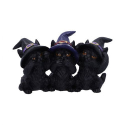 Three Wise Blacks Cats