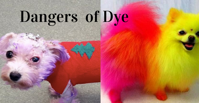 Dangers of Dyes!