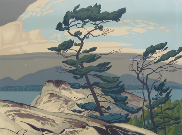 White Pine by Casson