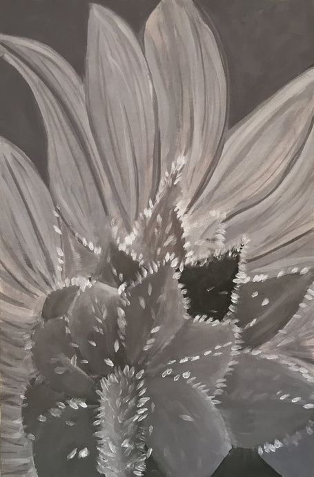 Muted Sunflower