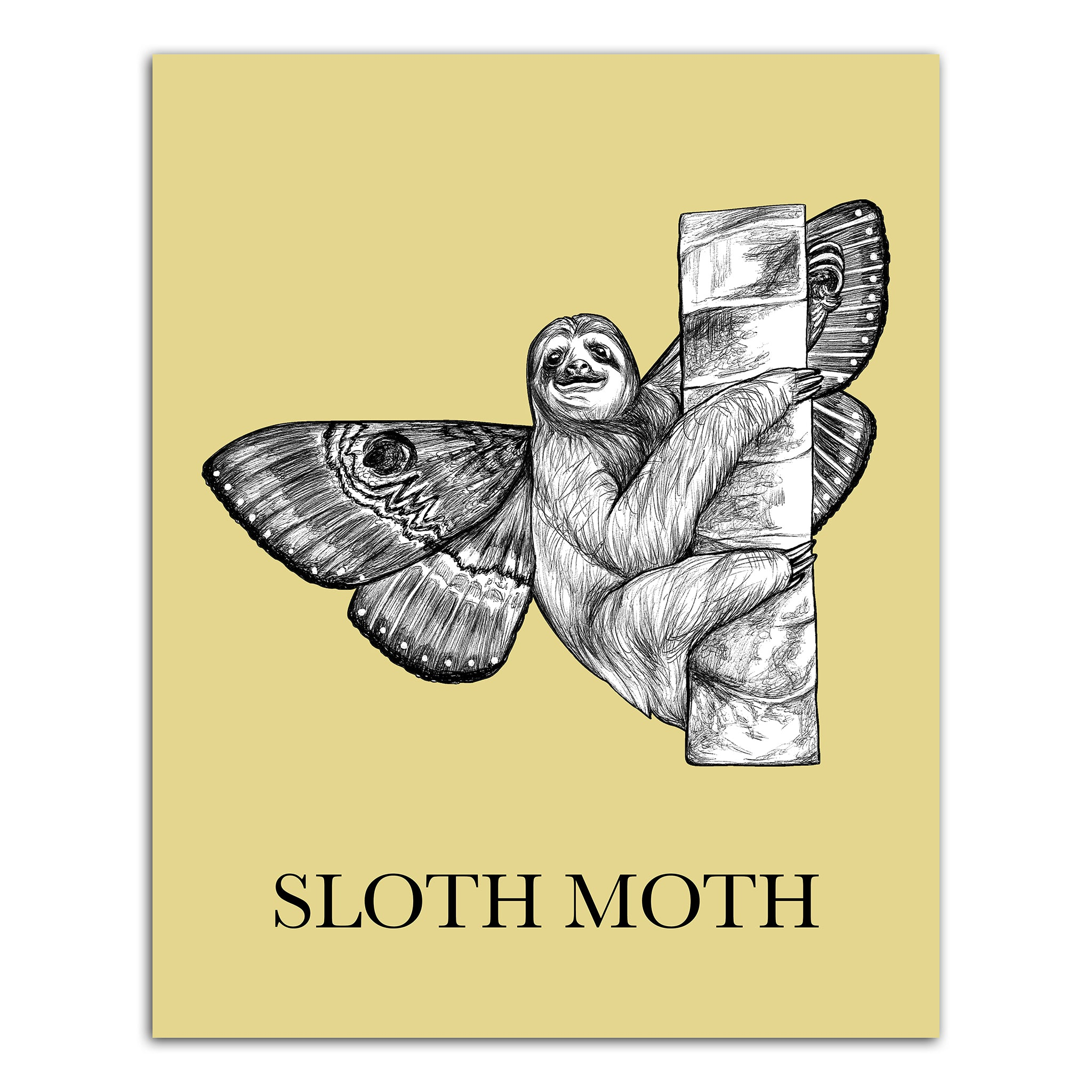 "Sloth Moth 8x10"" Art Print"