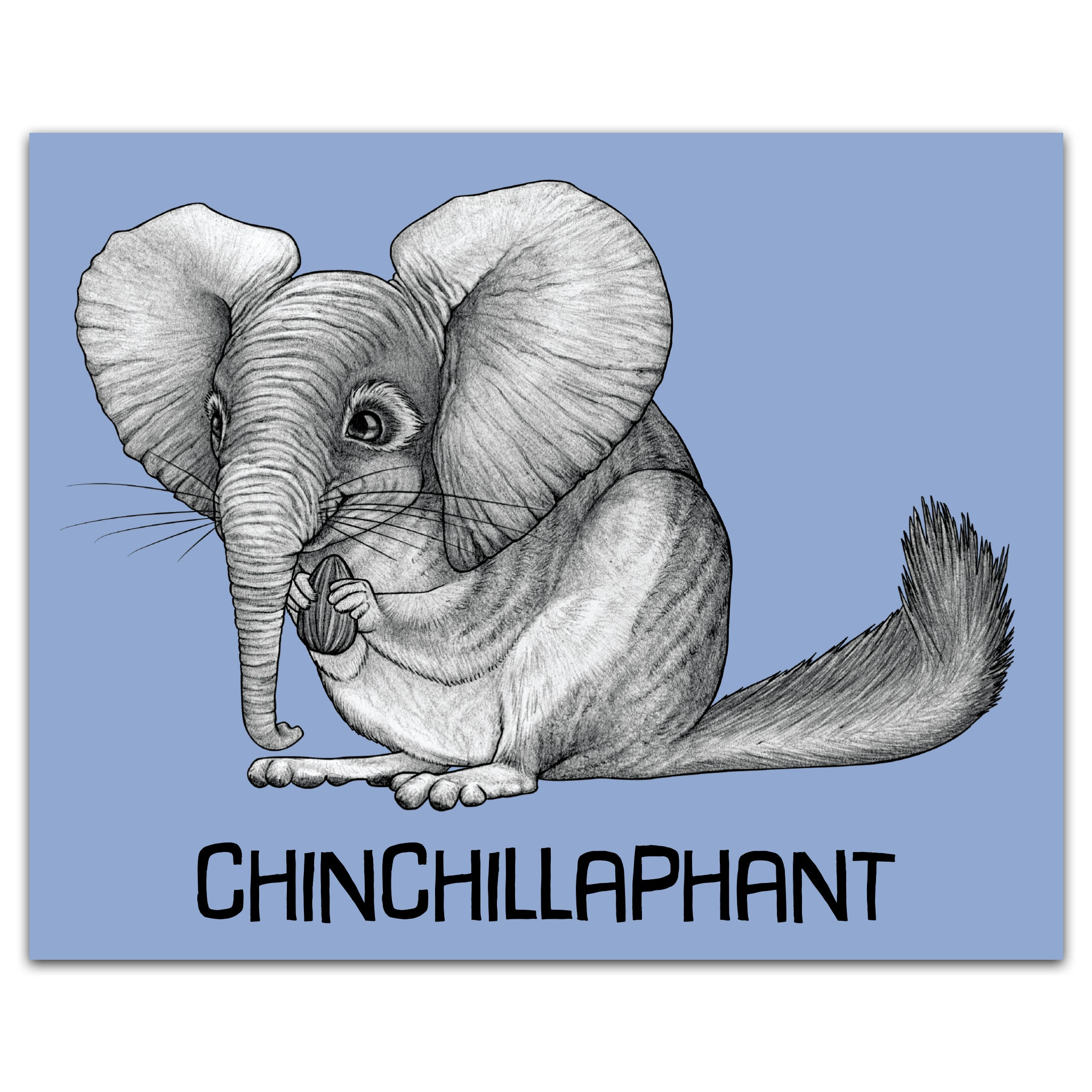"Chinchillaphant 8x10"" Art Print"