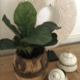 Artificial Fiddle Leaf Plant (small)