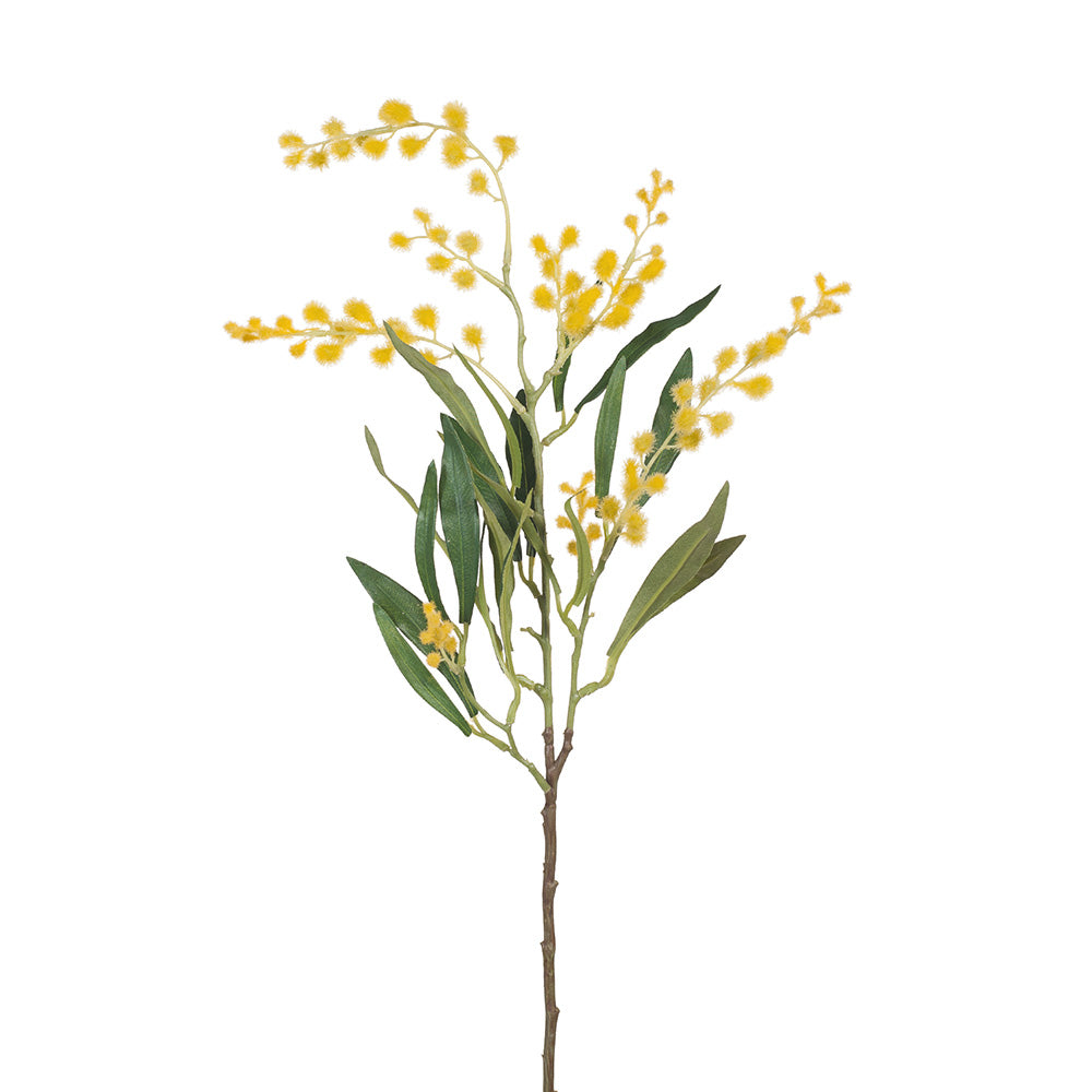 Wattle Spray (Yellow Stem)
