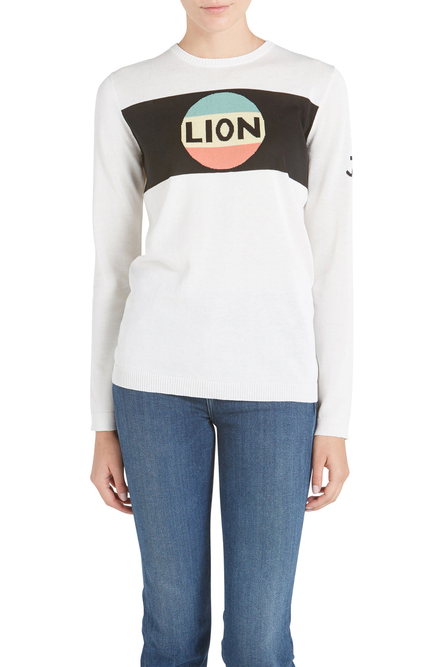 LION STRIPE JUMPER