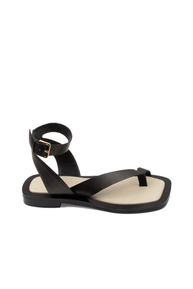 A.Emery Asher Sandal in Black from The New Trend