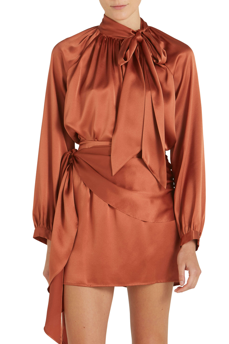 Michelle Mason Tie Neck Blouse in Dune from The New Trend
