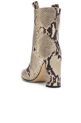 Paris Texas Ankle Boot Natural Snake from The New Trend Back View