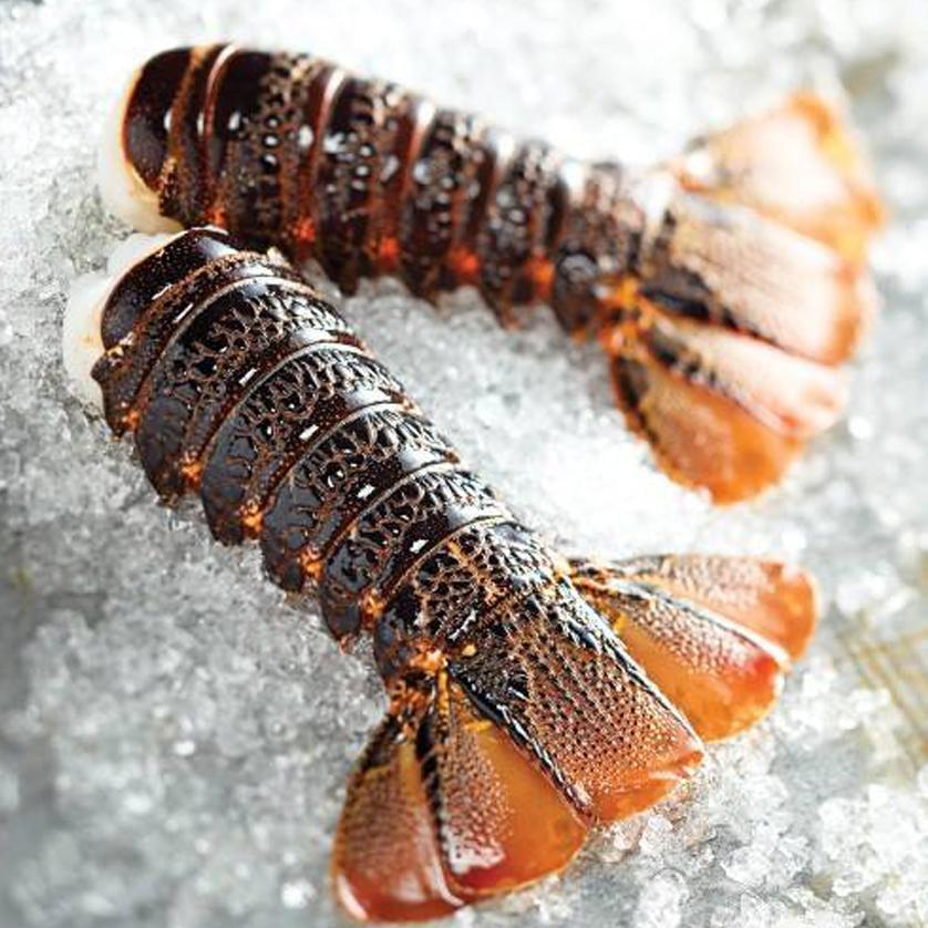 Tristan da Cunha Lobster Tails - 4 Large Tails IQF