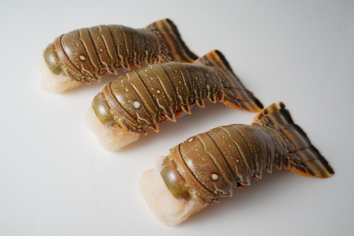 Brazilian Lobster Tails - 5 Large Tails IQF
