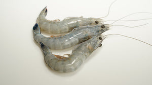 Blue Prawns U8/U9 2.2 lbs Fancy Pak