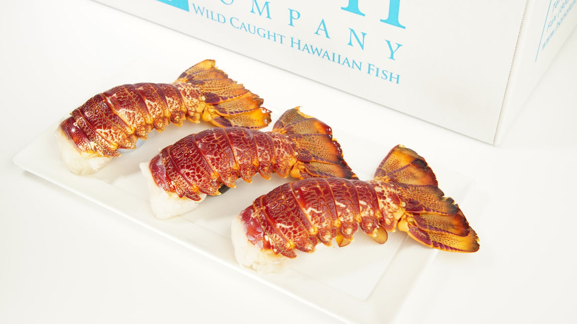 Australia Cold Water Red Lobster Tails - 4 Large Tails IQF
