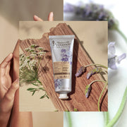 Mademoiselle Provence calming Lavender and Angelica Hand Cream. Natural Hand lotion made with lavender and angelica extracts. Made in France Hand Cream. Photo of tube in a collage.