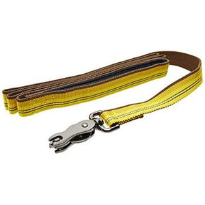 "Coastal K9-Explorer Leash Reflective 6' 5/8"" Goldenrod"