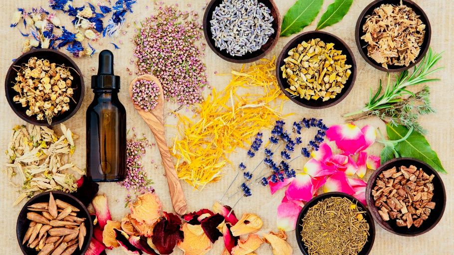 Bring balance & health to your Mind, Body, and Soul with Ayurveda