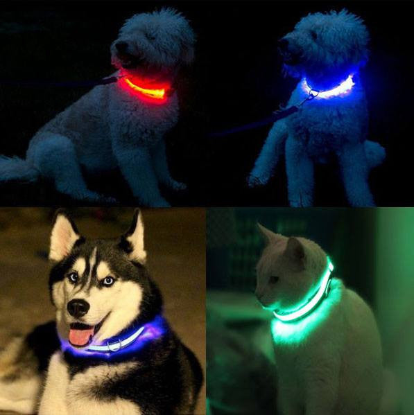 LED Safety Pet Collar, Pets, Think Bazaar