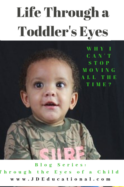 Life through a Toddler's Eyes