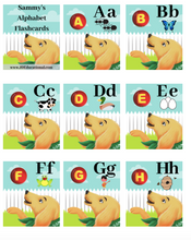 Sammy Alphabet Flashcards