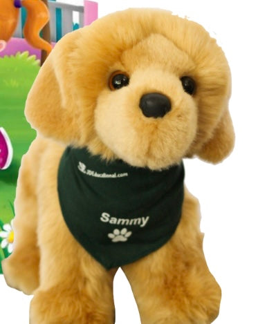 Level 3: Pre-K YOUR Way Activity Book