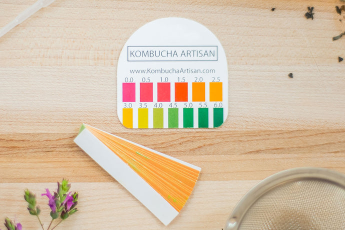 Kombucha pH Test Strips