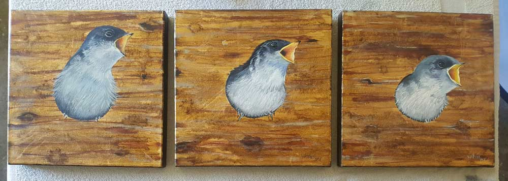 3 Baby Birds, Original Paintings