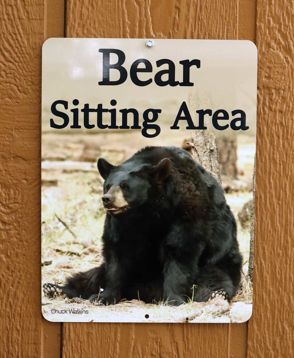 Bear sitting area Sign