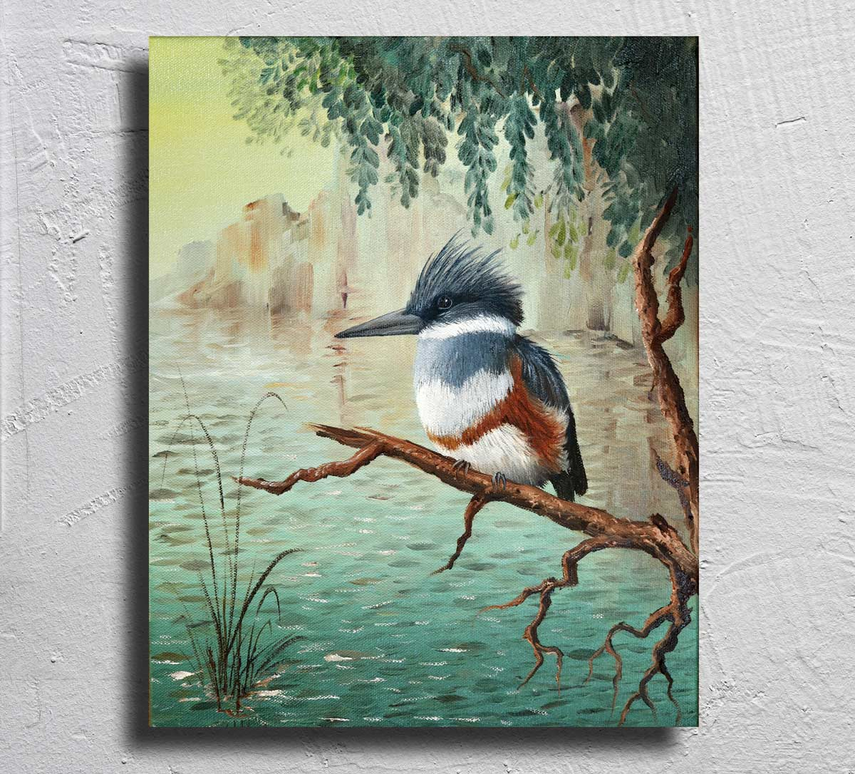 """Belted Kingfisher"" on Aluminum"
