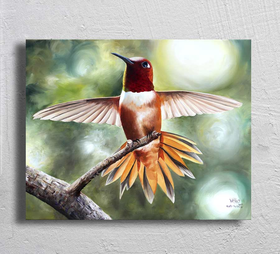 """Rusty the Rufous"" on Aluminum"
