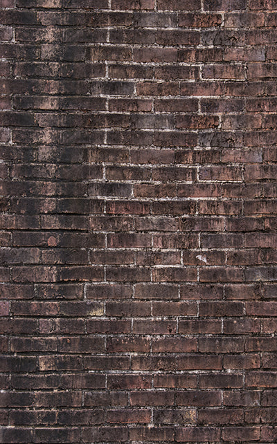 Old Rural Brick Wall • Brick Stone & Plaster